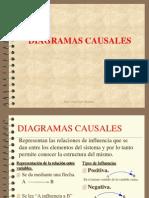 001_diagramas_causales (1)
