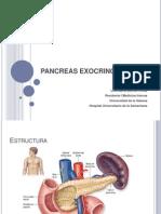 Pancreas Exocrino Fisiologia