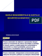Baze Audit SSM