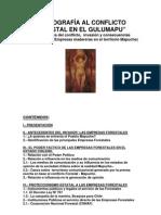 Radiografia Al Conflicto Forestal en El Gulumapu