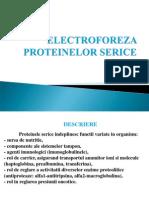 Electroforeza Proteinelor Serice