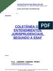 09 - Resumo - Direito Constitucional - Coletânea de Jurisprudência e Entendimentos Jurisprudenciais segundo a ESAF