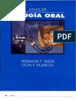 Atlas de Cirugia Oral - Hermann F Sailer