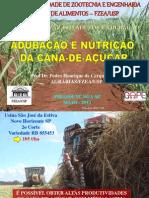 Nutrição e Adubação da Cana mai13
