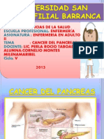 Diapositiva Cancer Del Pancreas