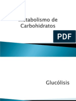 metabolismocarbohidratos-1224436354745080-9