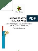 Guia Produccion Magallanes