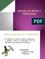 Analisis Metas y Problemas