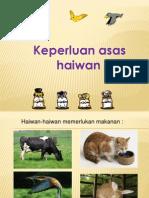 Ppt Keperluan Asas Haiwan