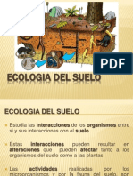 ecologiadelsuelo.2013