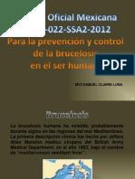 Brucelosis NOM 022.pptx