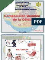 T1 componentes quimicos célula