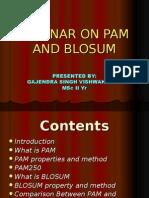 bioinformatics in PAM AND BLOSUM