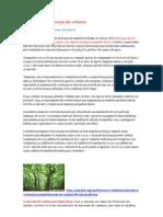 O mercado das licenças de carbono