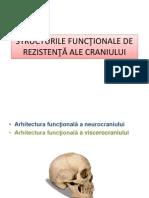 Structura rezistenta craniu