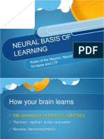 neural basis of learning - dot point 2