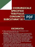 Boli Specifice Pielii