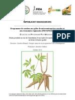 ÉTUDE DE CAS PROGRAMME PAYS MADAGASCAR Étude préalable en vue de l'installation d'une unité de transformation du manioc en farine de haute qualite (source