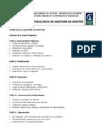 GUIA METODOLÓGICA AUDITORÍA DE GESTIÓN