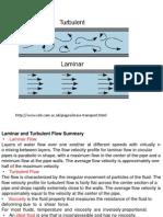 Laminar and Turbulent Flow (1)