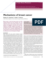 Breast Cancer Mechansm