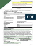 FormatoSNIP04-PerfilSimplificado