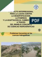 Presentacion Proyecto Ana Peru 15-06-13[Vf]
