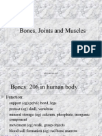 Bones, Joints, Muscles