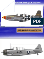 WW II American Aircraft Prints (CLW Graphics)