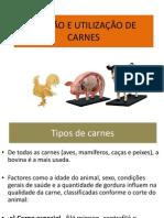 Tipo de Carnes