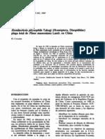 pdf_plagas_BSVP-15-04-343-363