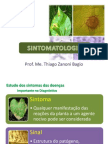 fitopatologia 03 sintmatologia