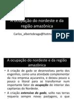 A ocupação do nordeste e da região amazônica