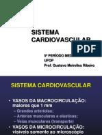 Patologia Do Sistema Cardiovascular I
