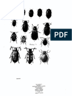 Insect and Mite Pests in Food Volume I