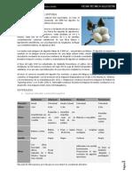 Ficha técnica fibra algodón