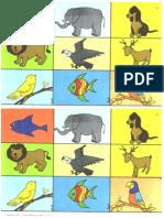 Clasifica Animales