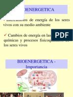 Semana 3 Bioenergetica Lennis