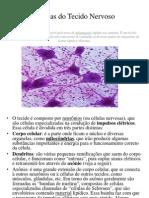Células do Tecido Nervoso.pptx