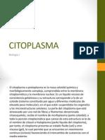 citoplasma-120416171438-phpapp01