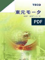 AEEF(Japanese) 1(Teco)