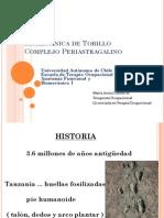Biomecanica de Tobillo