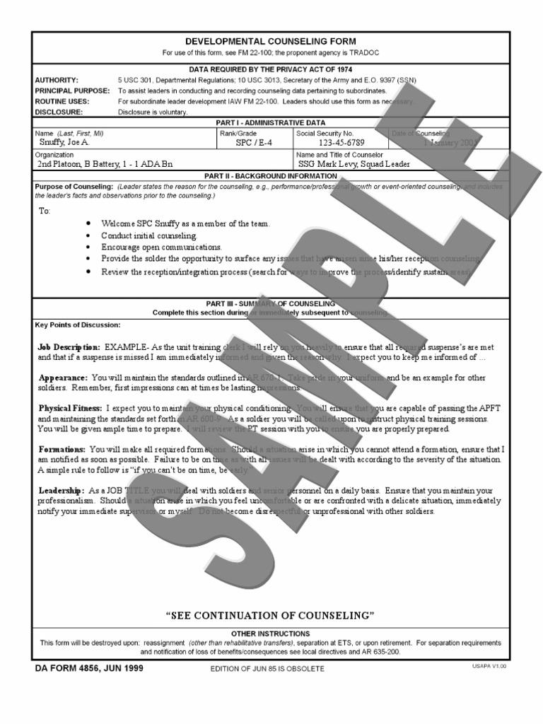 Beautiful 4856 Initial Counseling Template Sketch Example Resume