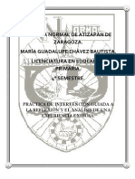 Ensayo Maria Guadalupe Chavez
