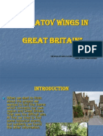 Saratov wings in the UK для амер центра