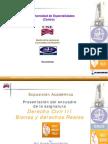 Formato Presentacion Bienes y Derechos Reales Xx2009a