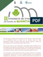 II Inventario Invernaderos 2009