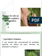 Manejo do solo na produção orgânica de hortaliças.pptx