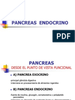 PANCREASENDOCRINO[2]