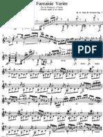 Marco Zani de Ferranti - Op. 7 Fantasie variée